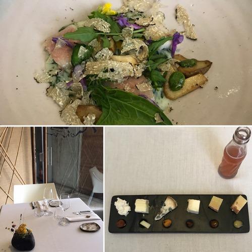 MONTIA | Cocina creativa con productos del monte